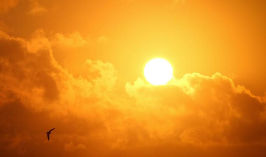 Vídeo: Especialistas alertam sobre a importância de cuidar da saúde dos olhos nos dias de sol