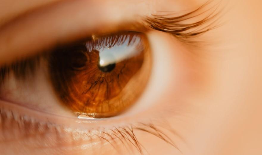 59b952454 Toxoplasmose ocular: Um risco para os olhos
